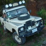 landy 88 halogenos